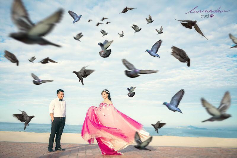 chụp ảnh cưới công viên biển đông đàn bồ câu