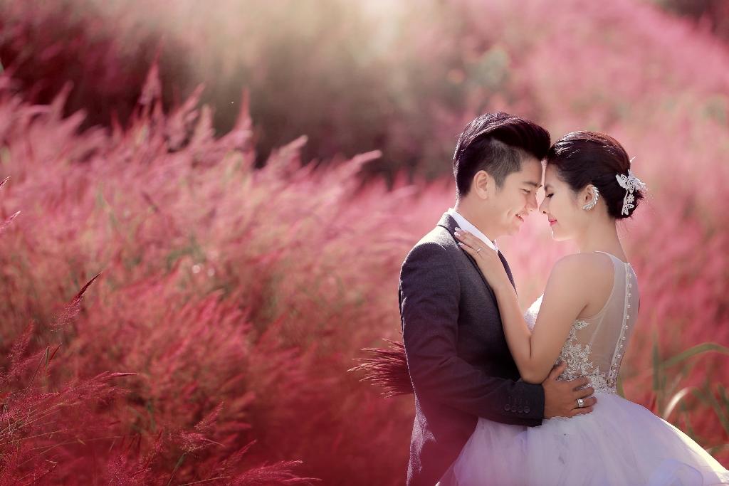 chụp hình cưới mùa cỏ hồng đà lạt