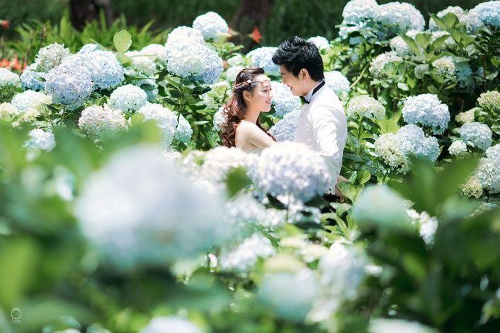 chụp hình cưới mùa hoa đà lạt